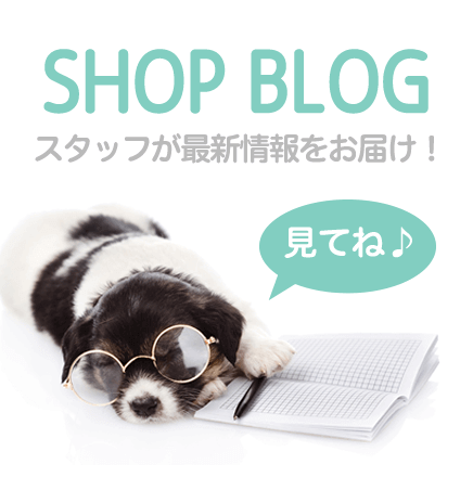 FuzzYard Shop Blog