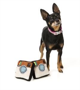 犬猫用 おもちゃ/ぬいぐるみ ドッグスタ