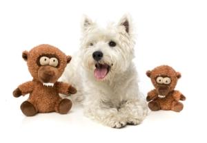 犬猫用 おもちゃ/ぬいぐるみ チーキー まんとひひ