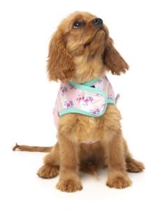 犬用 ラップベスト ミスタースパークルス