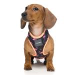 犬用 ソフトハーネス ファブミンゴ
