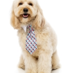 犬猫用 ネクタイ グアバ
