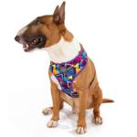 犬用 ソフトハーネス プリズム