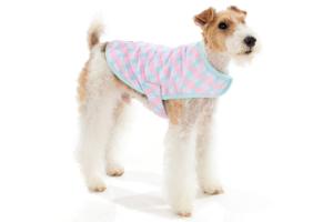 犬用 ラップベスト ソフィ