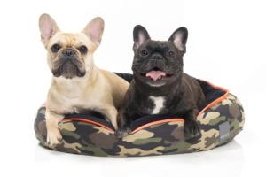 犬猫用 リバーシブルベッド カモ グリーン